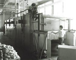 TX1241-2-of-2-Dunean-Mill-dryer