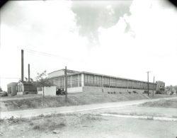 TX1252-Piedmont-Plush-Mills